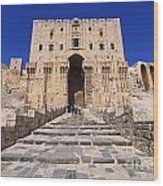 The Citadel In Aleppo Syria Wood Print