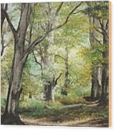 The Clearing Wood Print