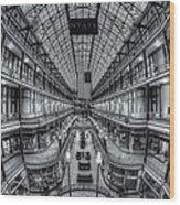 The Cleveland Arcade Viii Wood Print