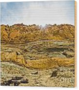 The Cliffs At Torrey Pines San Deigp Wood Print