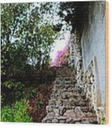 The Climb Wood Print