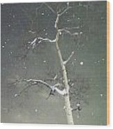 The Cold Bones Of Trees At Night Wood Print