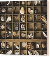 The Collection Wood Print