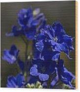 The Color Blue V6 Wood Print
