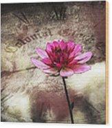 The Color Of Springtime - Vintage Art By Jordan Blackstone Wood Print