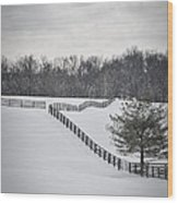 The Color Of Winter - Bw Wood Print