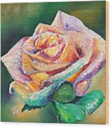 The Colors Of A Rose Wood Print