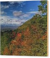 The Colors Of Fall Wood Print by Judy  Waller