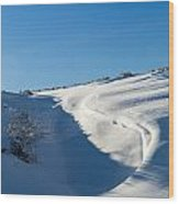 The Colors Of Snow Wood Print