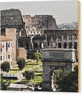 The Colosseum Through The Forum Wood Print