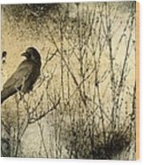 The Common Crow Wood Print