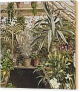 The Conservatory Wood Print