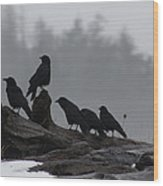The Corvidae Family  Wood Print