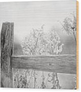 The Country Fence In Black And White Wood Print