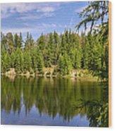 The County 1 Wood Print