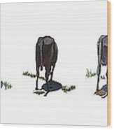 The Cows Wood Print