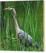 The Crane 2010. No.2 Wood Print