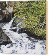 The Creek At Anna Ruby Falls Wood Print