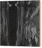 The Crevice Wood Print