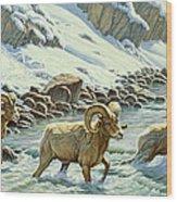 The Crossing - Bighorn Wood Print