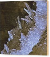 The Crystal Slipper Wood Print