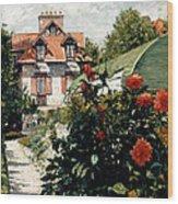 The Dahlias Garden At Petit Gennevilliers Wood Print