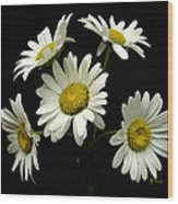 The Daisy Five  Wood Print