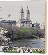 The Dakota From Central Park Wood Print