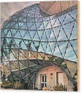 The Dali Museum St Petersburg Wood Print by Mal Bray