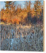 The Dance Of The Cattails Wood Print