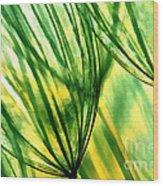 The Dandelion Wood Print by Odon Czintos