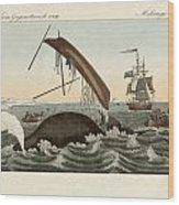 The Dangers Of Whale Fishing Wood Print