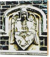 The Dark Eyed Angel  Wood Print