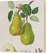 The D'auch Pear Wood Print by William Hooker
