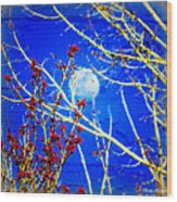The Day The Moon Stayed Out All Day Wood Print