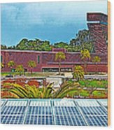 The De Young Fine Arts Museum From Roof Of California Academy Of Sciences In Golden Gate Park-ca Wood Print