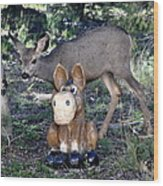 The Deer And The Donkey Wood Print
