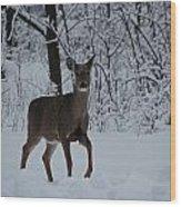 The Deer In The Snow Wood Print