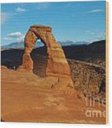 The Delicate Arch 10 Wood Print