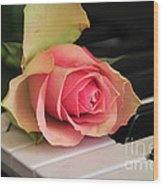 The Delicate Rose Wood Print