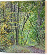 The Dense Forest Wood Print