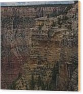 The Depths Of The Canyons Wood Print