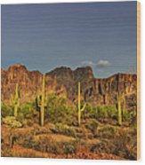 The Desert Aglow Wood Print