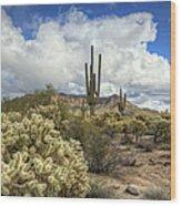 The Desert Southwest Wood Print