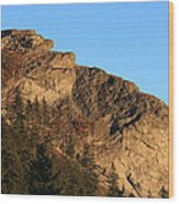 The Devil's Courthouse - Blue Ridge Parkway Wood Print