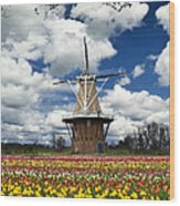 The Dezwaan Dutch Windmill Among The Tulips On Windmill Island In Holland Michigan Wood Print
