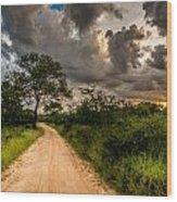The Dirt Road Wood Print