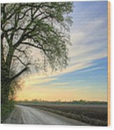 The Dirt Road Wood Print by JC Findley