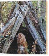 The Dog In The Teepee Wood Print