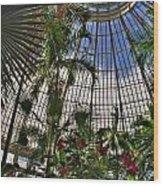 The Dome 002 Buffalo Botanical Gardens Series Wood Print